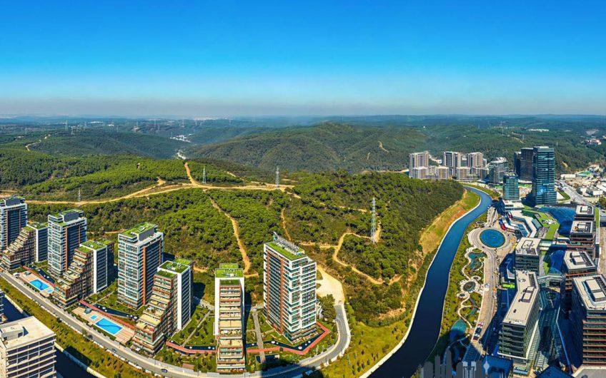 Тихий район рядом с большим парком в зеленом